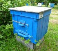Пчеловодству быть и развиваться