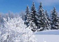Декабрь год заканчивает, зиму начинает