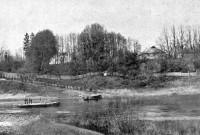 О чём шумит николаёвский парк