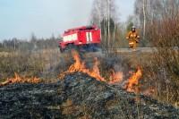 Чёрные поля — от пожаров