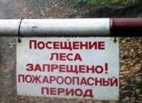 Посещать леса — запрещено