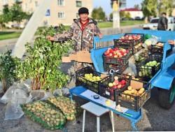 С ярмарок в Дисне и Миорах пополняются запасы